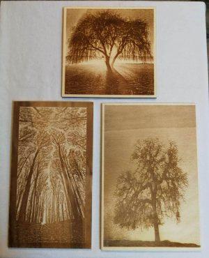 Ethnological Gifts Laser engraved wood images