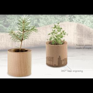 Ekoman Rastlinica v lesenem lončku