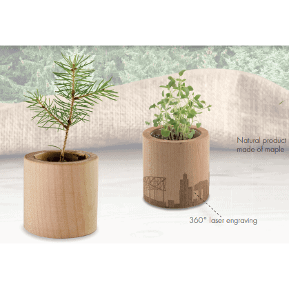 All products Plant in wooden pot