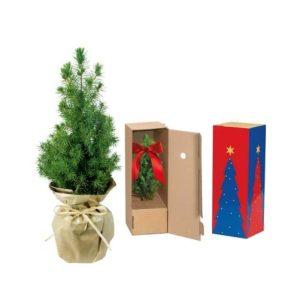 Flower pots, box, trough Little christmas tree in paper