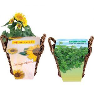 Različna embalaža Zelišča v košarici