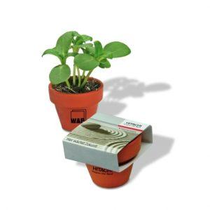 Flower pots, box, trough Mini logo plant pot