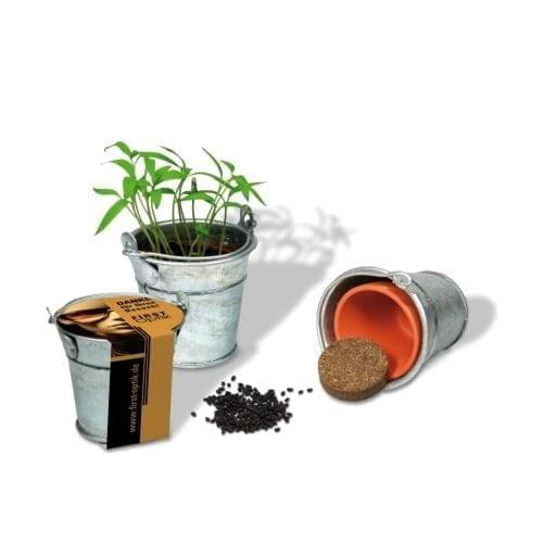 Cvetlični lončki, škatlica, korito Mini vedro z rastlino