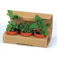 Cvetlični lončki, škatlica, korito Vrt v malem