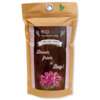 Plants in Different Packaging Seeds in an eco bag