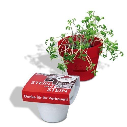 Cvetlični lončki, škatlica, korito Logo rastlinica