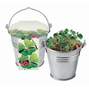 Flower pots, box, trough Zinc bucket four-leaf-clover