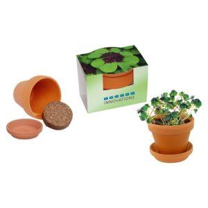 Flower pots, box, trough Lucky Growth Pot