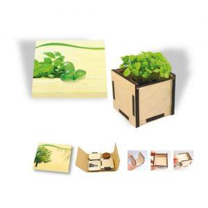 By Mail Planting kraft kit – basil in a box