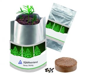 Flower pots, box, trough Christmas tree in a bag