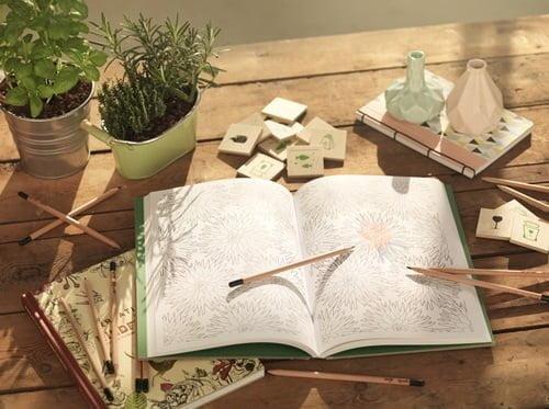 Barvice Barvice Sprout – svinčniki s semeni