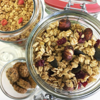 Ekoman Ročno izdelana granola – lešnik in brusnica