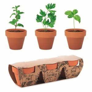 All products Terracotta 3 herb pot set