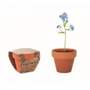 All products Terracotta pot 'forget me not'