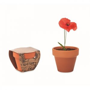 All products Terracotta pot 'poppy'