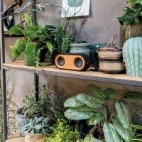 Brezžični zvočniki Bambusov dvojni brezžični zvočnik