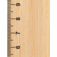 All products Rooler bamboo ruler, paw