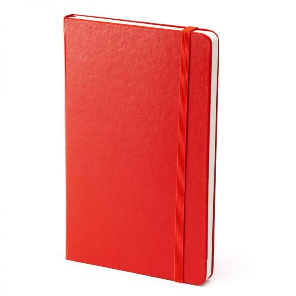 Notebooks Moleskine notebook